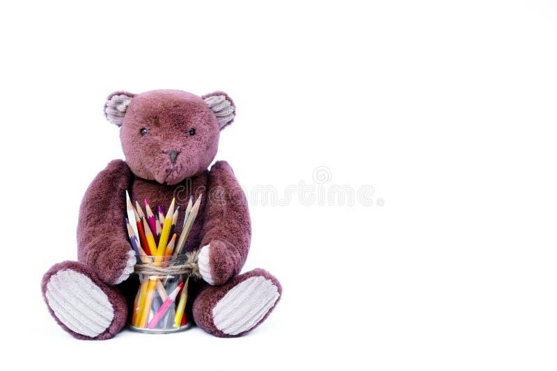 Brown-Teddybärpuppe, die mit bunten Bleistiften in einem Glas lokalisiert auf Weiß sitzt lizenzfreie stockfotografie