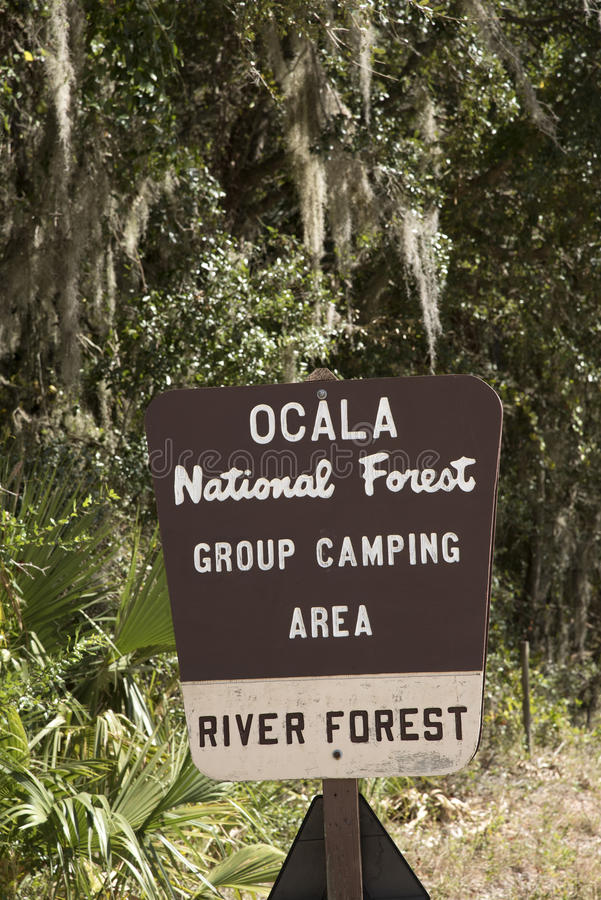 Brown tourist sign in Ocala Forset. Ocala National Forest Florida USA October 2016 - Brown tourist sign for a group camping area royalty free stock photo