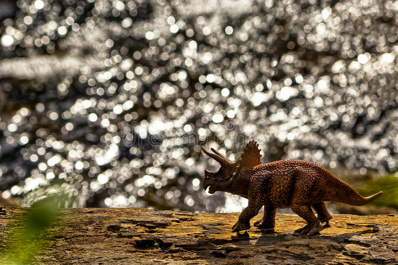 Brown Triceratops dinosaur walking with water in the background stock image