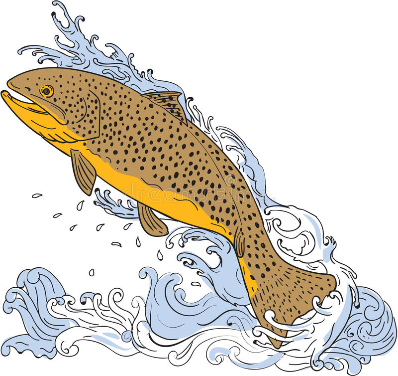 Brown Trout Swimming Up Turbulent Water Drawing vector illustration