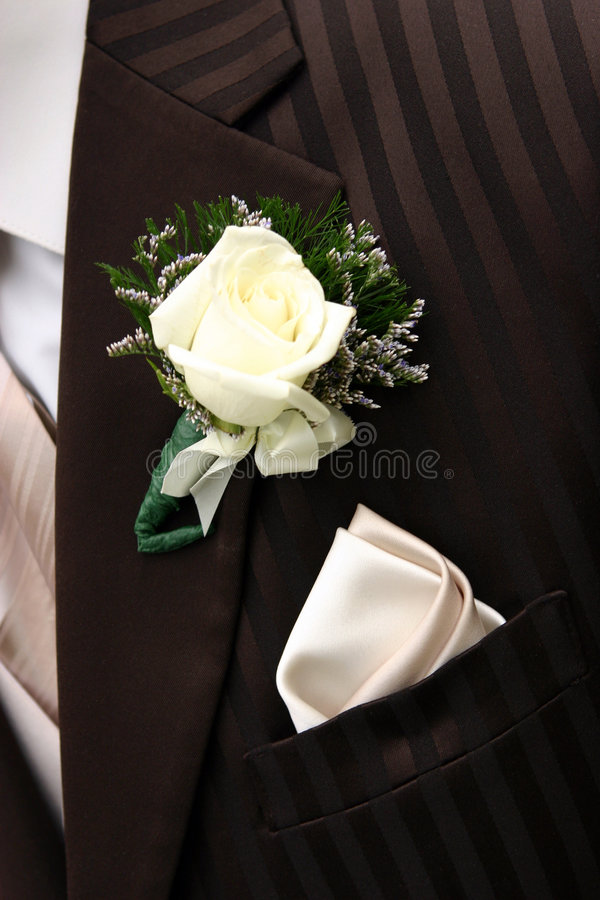 Free Brown Tux Royalty Free Stock Images - 2802499
