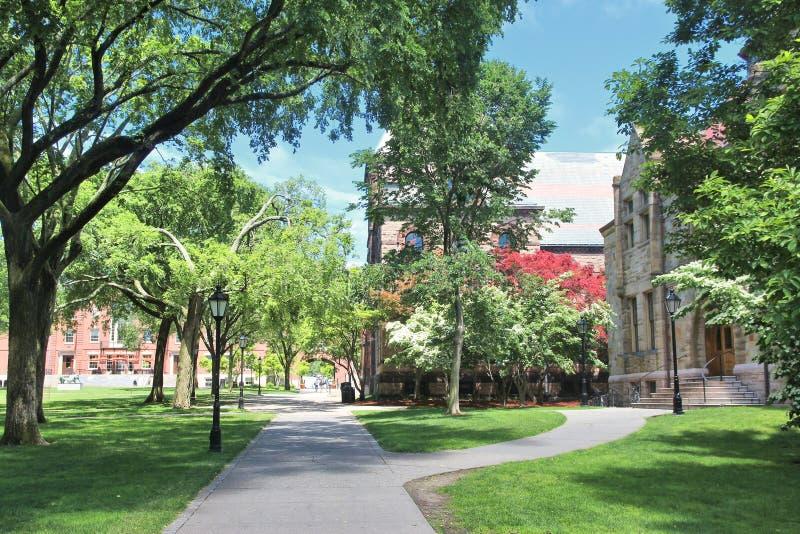 Brown University zdjęcie royalty free