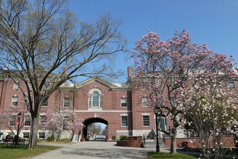Brown University: cuadrilátero en primavera fotos de archivo libres de regalías