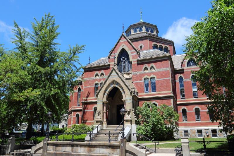 Brown University arkivbild