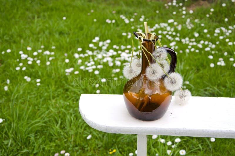 Brown vintage bottle with dry white dandelion clocks. On shelf stock photos