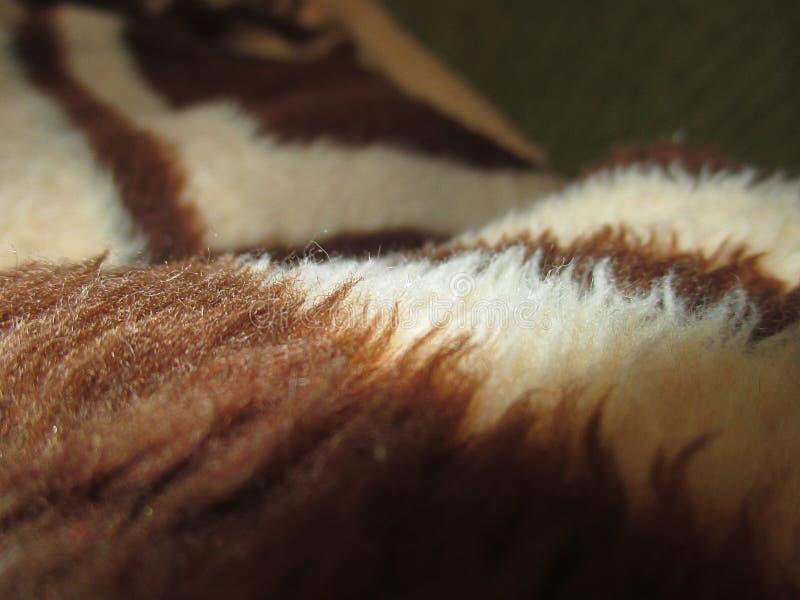 Brown wełny koc zamknięta w górę obrazy royalty free