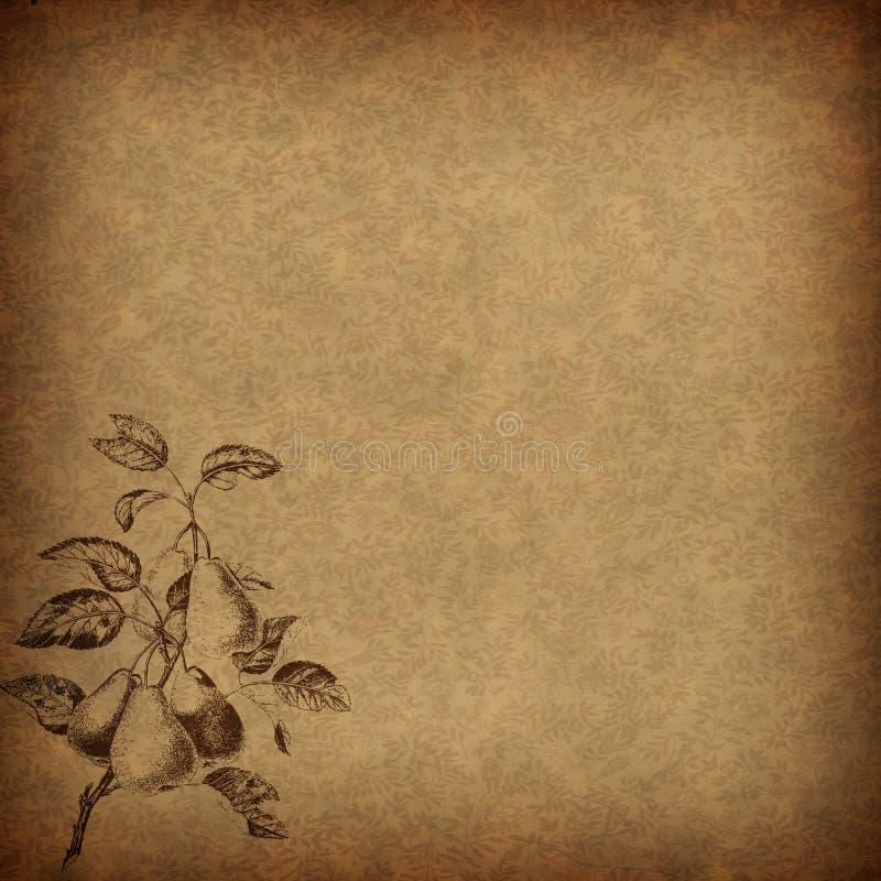 Brown-Weinleseblumenpapier mit einem Birnenmotiv stockfotos