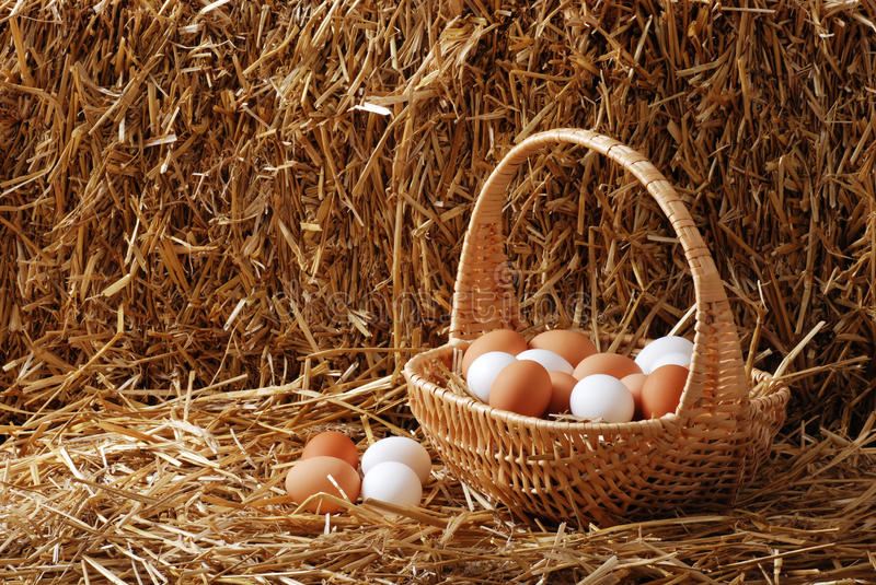 Brown and white eggs in a basket stock images