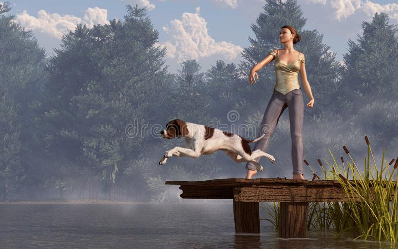 Dock Dog. A brown and white English pointer leaps off an old wooden dock into a tree-lined lake. Behind the dog, a barefoot woman in jeans has thrown a ball for royalty free illustration