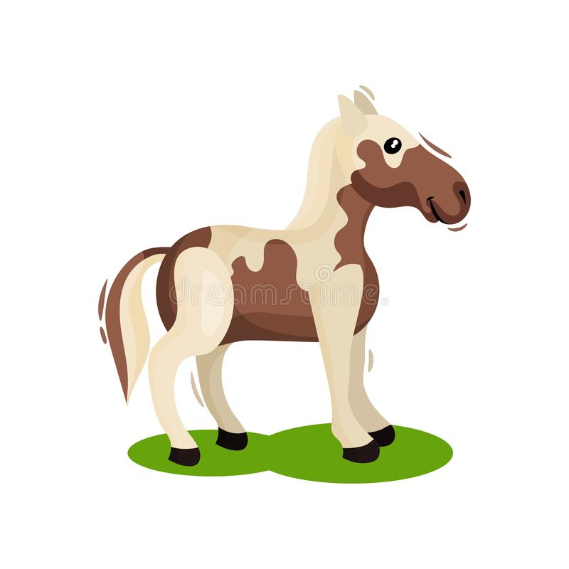 Brown-white horse standing on green grass, side view. Hoofed mammal animal. Wildlife theme. Flat vector design. Brown-white horse standing on green grass, side stock illustration