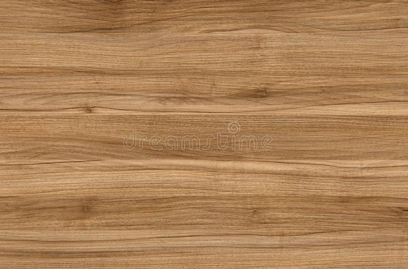 Brown wood texture. Abstract wood texture background stock photography