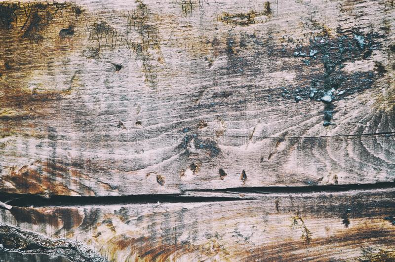 Brown wood texture. Abstract background, empty template royalty free stock images