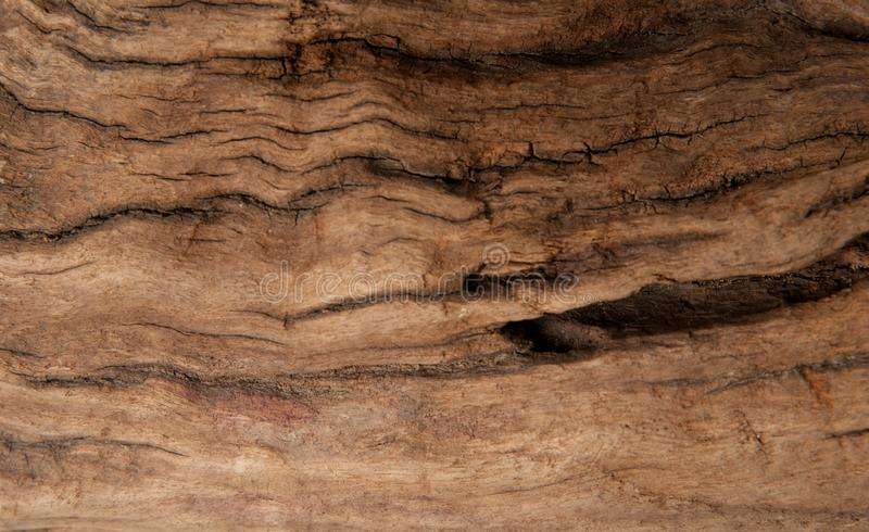 Brown wood texture background. Timber abstract background texture. Dark brown wood texture background. Wood abstract background texture with cracks and scratches royalty free stock photography