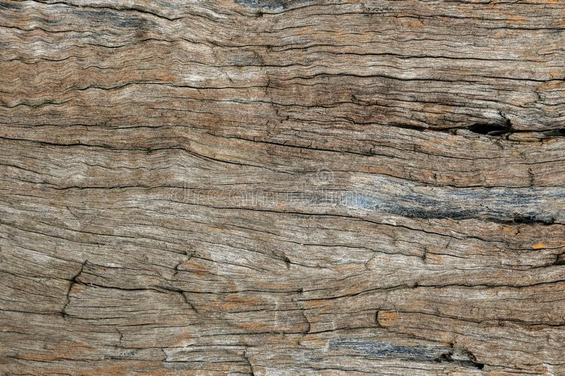 Brown wood texture, Rough, uneven. Old wood texture for add text or work design for backdrop product. Top view royalty free stock photos