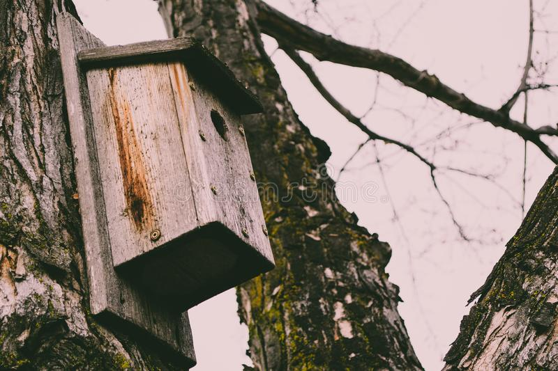 Brown Wooden Bird House on Tree stock photos