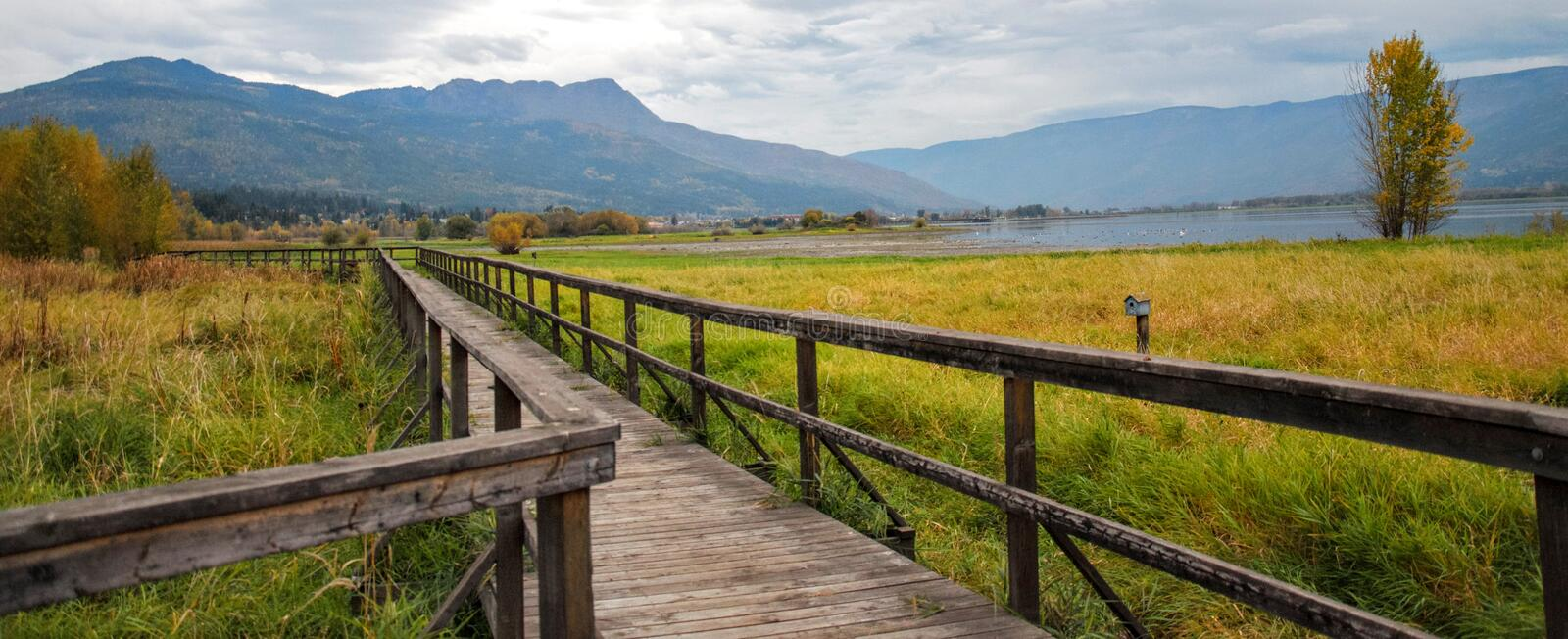 Brown Wooden Bridge Beside Green Grass Field stock image