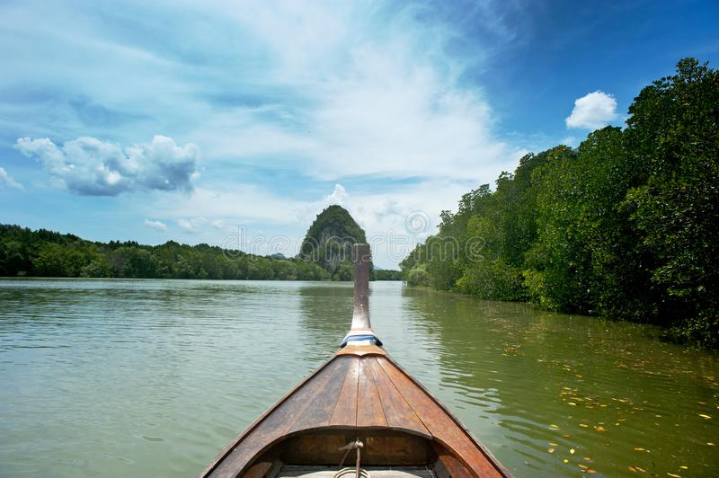 Brown Wooden canoe near trees stock photography