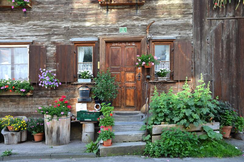 Brown Wooden Door Near Green Plant Outside the House royalty free stock photo