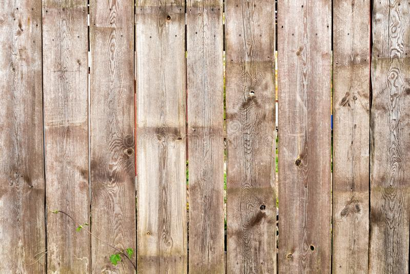 Brown wooden fence background. With green leaves stock photography