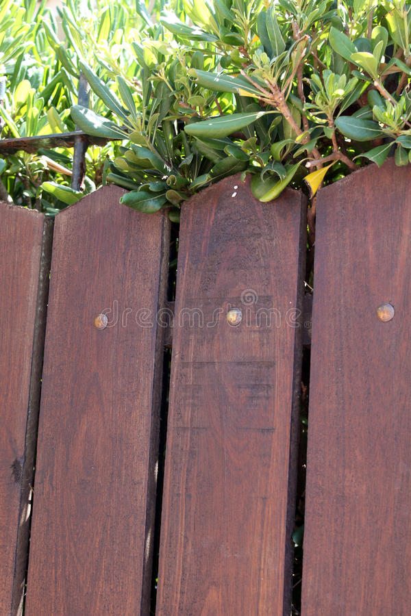 Brown wooden fence. With trees from top stock image