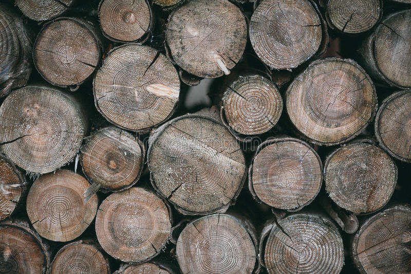 Brown Wooden Fire Log Near Each Other Free Public Domain Cc0 Image