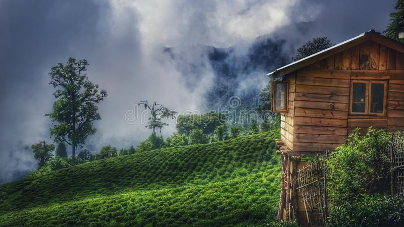 Brown Wooden House On Green Grass Field royalty free stock photography