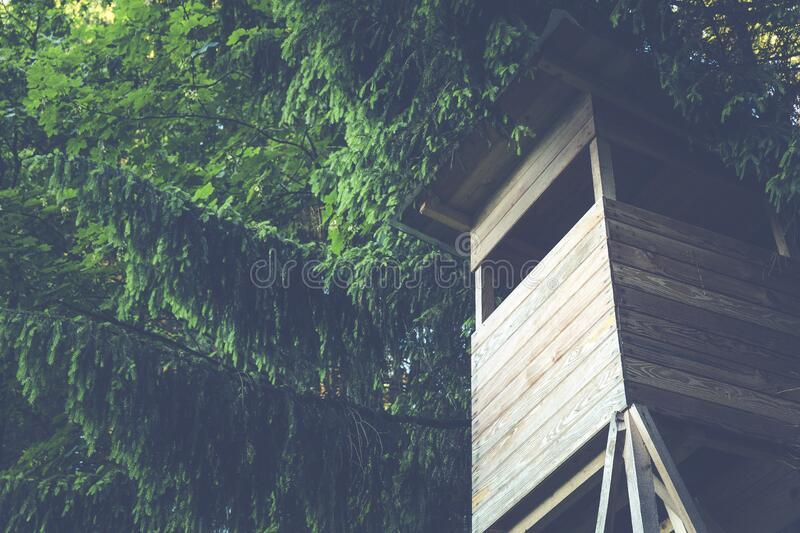 Brown Wooden House With Green Trees stock photo