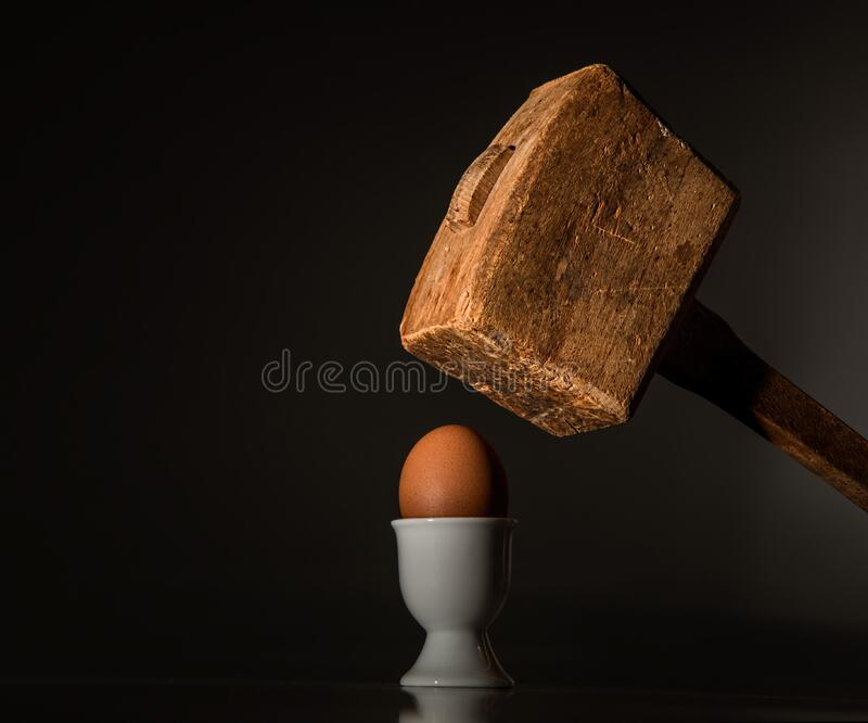 Brown Wooden Mallet Near Brown Chicken Egg stock image