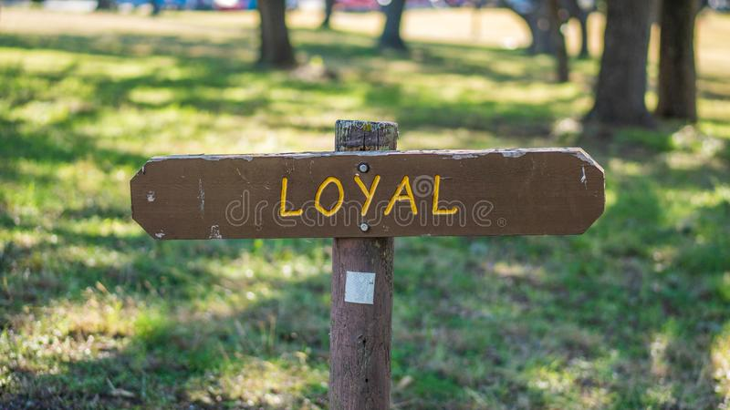 Brown wooden sign in grassy field with loyal written on it stock photos