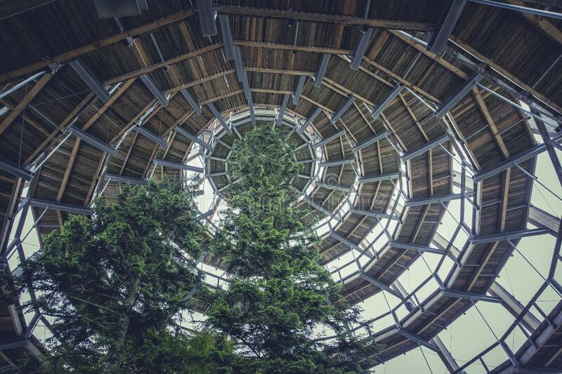 Brown Wooden Spiral Dome Building With Green Tree royalty free stock images