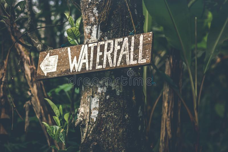 Brown Wooden Waterfall Direction Sign Placed on Brown Tree Bark royalty free stock image