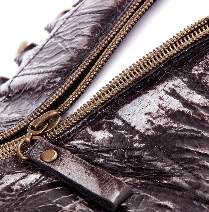 Download Brown Zipper opened stock photo. Image of open, idea - 25211094