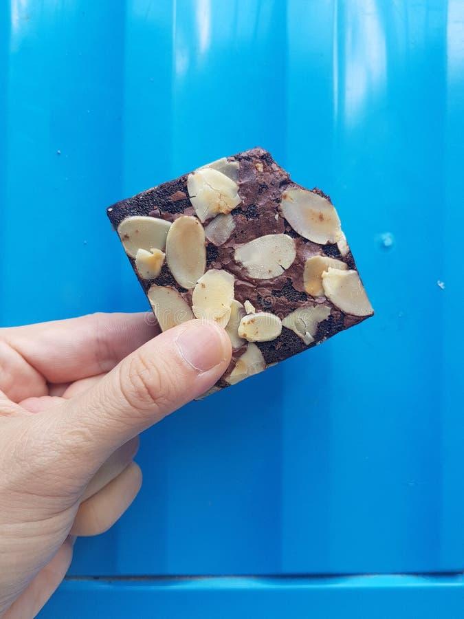 Brownie delizioso casalingo del cioccolato fotografia stock