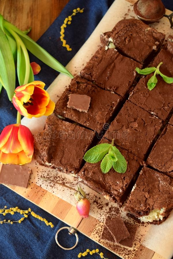 Brownie square pieces covered with cacao powder stock photography