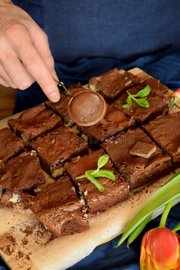 Brownie square pieces decorated with mint and a confectioner royalty free stock photo