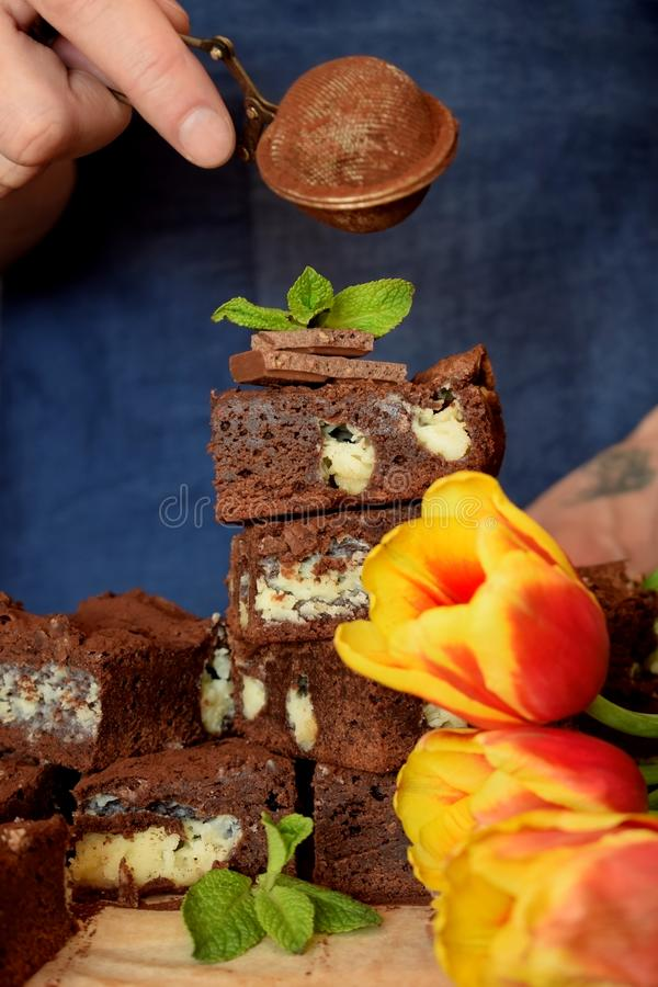 Brownie square pieces decorated with mint royalty free stock images