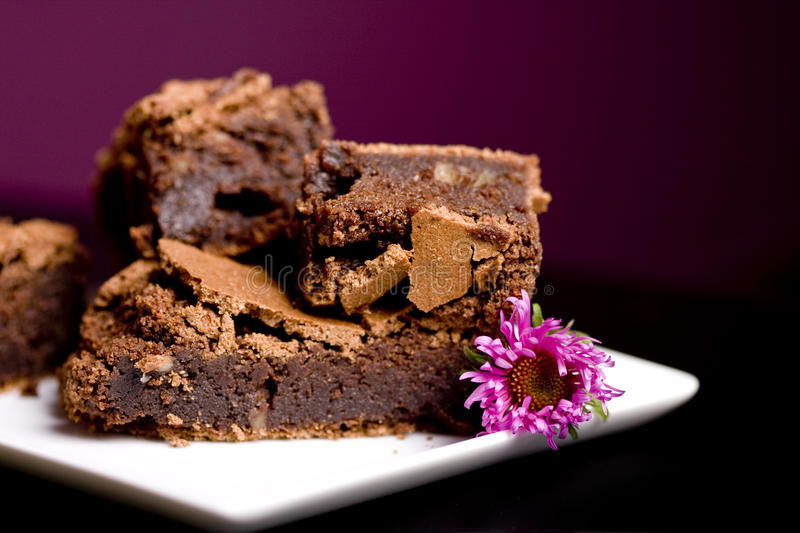 Brownies! stock photo