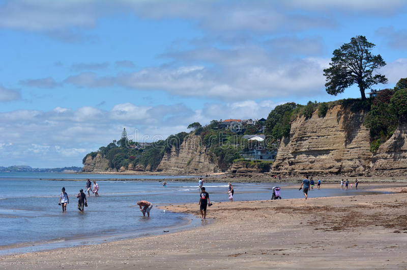 Browns Bay Auckland New Zealand. AUCKLAND, NZL - DEC 21 2014:Visitors on Browns Bay beach.Browns Bay is a very popular tourist destination on Auckland North stock photography