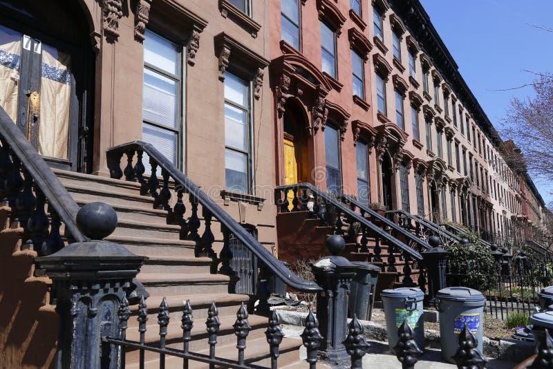 Brownstone Brooklyn, casas de fileira da inclinação do parque imagens de stock