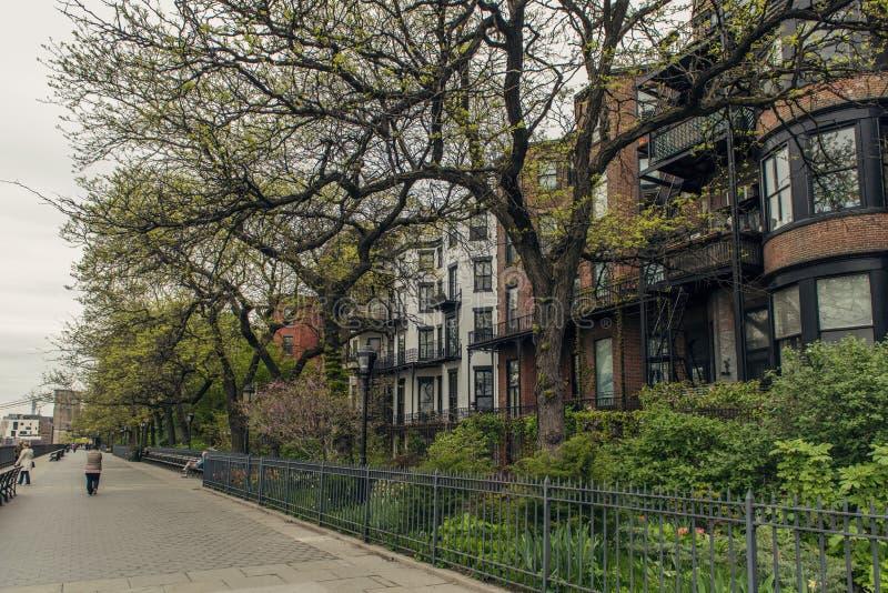 Brownstone huizen in de stad in de Hoogten van Brooklyn stock afbeelding