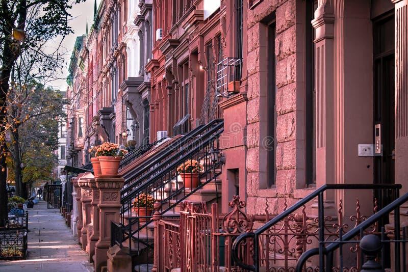 Brownstones de Harlem foto de stock royalty free