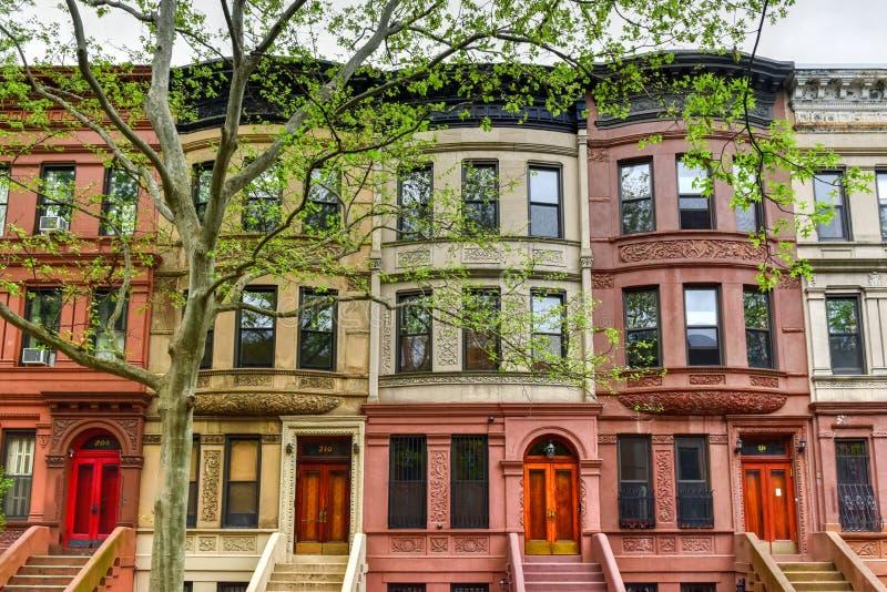 Brownstones de Harlem - New York City imagem de stock royalty free