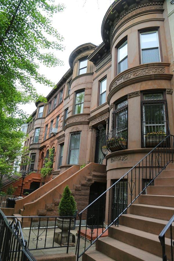 Brownstones di New York alla vicinanza storica di altezze di prospettiva immagine stock