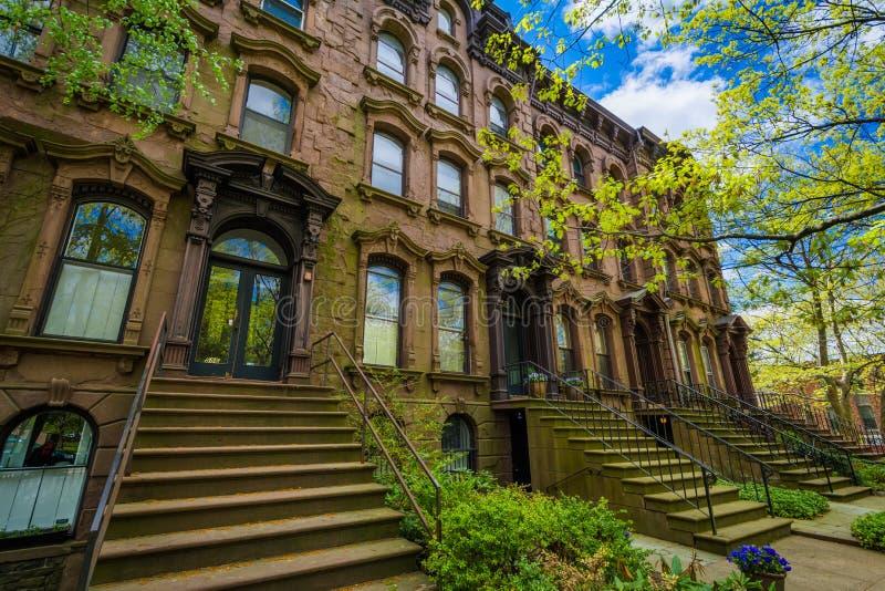 Brownstones entlang Kapellen-Straße an Wooster-Quadrat, in New-Haven, Connecticut lizenzfreie stockbilder
