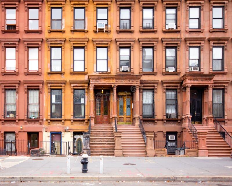 Brownstones NYC Харлем стоковая фотография rf