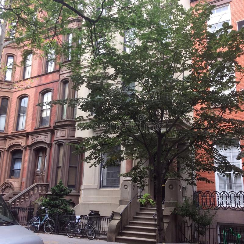 Brownstones van Brooklyn stock foto