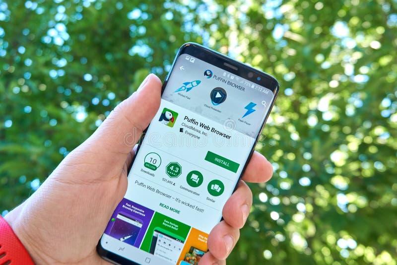 Browser mobiele app van het papegaaiduikerweb op Samsung s8 stock afbeelding
