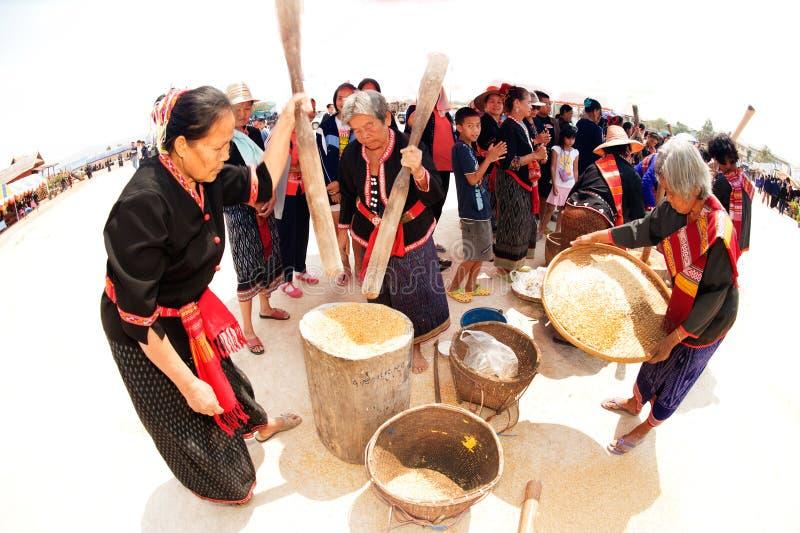 Broyage thaïlandais de femme de minorité de Phu et riz de vannage image libre de droits