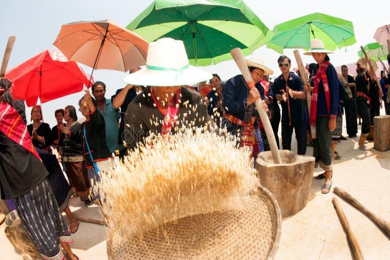 Broyage thaïlandais de femme de minorité de Phu et riz de vannage photographie stock libre de droits