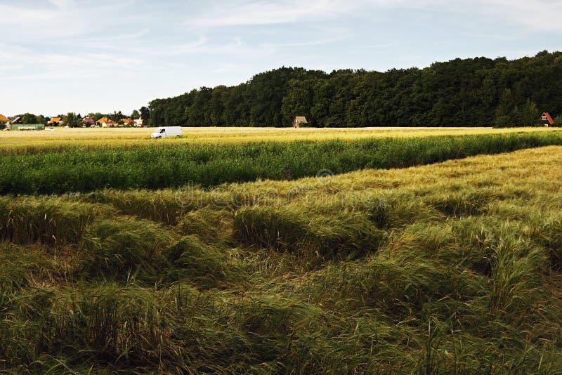 2016/07/07 Brozany nad Ohri, Tschechische Republik - weißer Packwagen parkte mitten in Landwirtfeldern lizenzfreie stockfotos